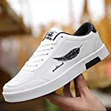 Labbin Mens Casual Shoes in Canvas White Sneakers Lightweight Shoes White 10