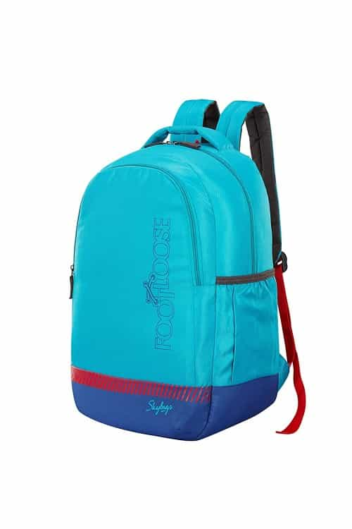 Skybags Saint 27 Ltrs Teal Casual Backpack